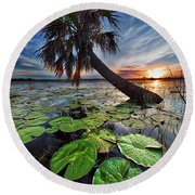 Lily Pads And Sunset Round Beach Towel