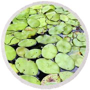 Lily Pads Round Beach Towel