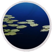 Round Beach Towel featuring the photograph Lily Pads Floating On River by Debbie Oppermann