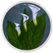 White Calla Lilies Round Beach Towel by Peter Piatt