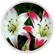 Round Beach Towel featuring the photograph Lily Pink Reflections by LeeAnn McLaneGoetz McLaneGoetzStudioLLCcom