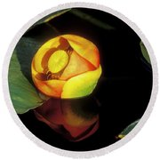 Round Beach Towel featuring the photograph Lily Reflection by Sandra Bronstein