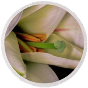 Round Beach Towel featuring the photograph Lily White by Roy McPeak