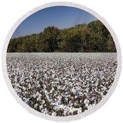 Limestone County Alabama Cotton Crop Round Beach Towel by Kathy Clark