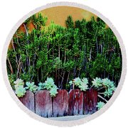 Line Of Succulents And Red Fence Round Beach Towel