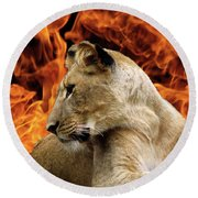 Lion And Fire Round Beach Towel