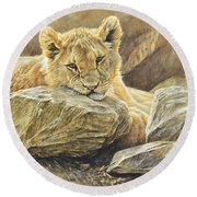 Lion Cub Study Round Beach Towel