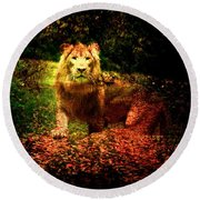 Round Beach Towel featuring the photograph Lion In The Wilderness by Annie Zeno