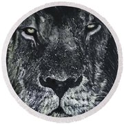 Round Beach Towel featuring the painting Lion by Kevin Daly