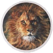 Lion Portrait Round Beach Towel by David Stribbling