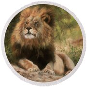 Lion Resting Round Beach Towel by David Stribbling