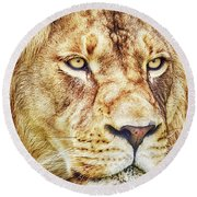 Lion-the King Of The Jungle Large Canvas Art, Canvas Print, Large Art, Large Wall Decor, Home Decor Round Beach Towel by David Millenheft