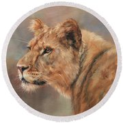 Lioness Portrait Round Beach Towel by David Stribbling