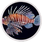 Lionfish In Black Round Beach Towel