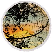 Round Beach Towel featuring the photograph Little Birdie Told Me So by James BO Insogna