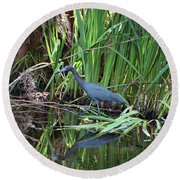 Round Beach Towel featuring the photograph Little Blue Heron by Sandy Keeton