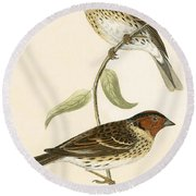 Little Bunting Round Beach Towel by English School
