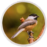 Little Chickadee Round Beach Towel