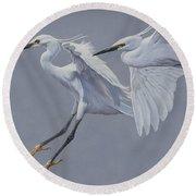 Little Egrets In Flight Round Beach Towel