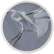 Little Egrets In Flight Round Beach Towel