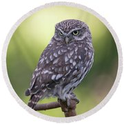 Little Owl Pipe Bender Round Beach Towel