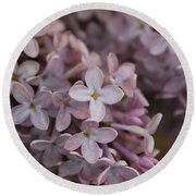 Round Beach Towel featuring the photograph Little Pink Stars by Christin Brodie