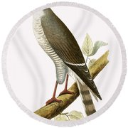Little Red Billed Hawk Round Beach Towel by English School