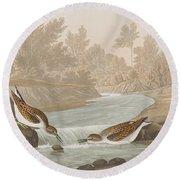 Little Sandpiper Round Beach Towel by John James Audubon