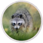 Little Wash Bear Raccoon Art Round Beach Towel by Jai Johnson