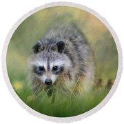 Little Wash Bear Raccoon Art Round Beach Towel