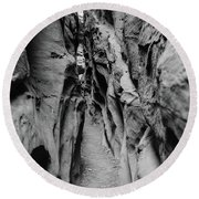 Little Wild Horse Canyon Bw Round Beach Towel