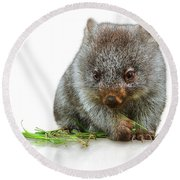 Little Wombat Round Beach Towel
