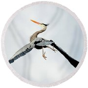 Round Beach Towel featuring the photograph Live Free And Fly by Rodney Campbell