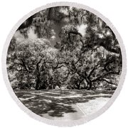 Live Oak Allee Infrared Round Beach Towel