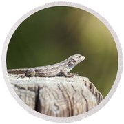 Lizard On Fence Post Round Beach Towel
