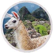Llama At Machu Picchu Round Beach Towel by Jess Kraft
