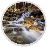 Log Falls On Limekiln Creek Round Beach Towel
