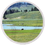 Lone Bison Out On The Prairie Round Beach Towel