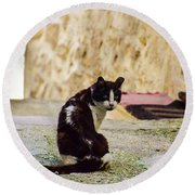 Lone Cat Round Beach Towel