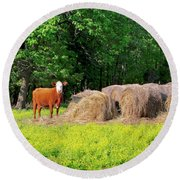 Lone Cow Guard, Smith Mountain Lake Round Beach Towel