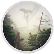 Lone Cyprus Tree Round Beach Towel by Craig J Satterlee
