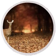 Round Beach Towel featuring the photograph Lone Doe by Darren Fisher