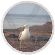 Round Beach Towel featuring the photograph Lone Gull by  Newwwman