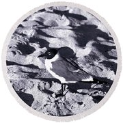 Lone Seagull Round Beach Towel