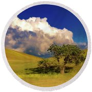 Round Beach Towel featuring the photograph Lone Tree With Storm Clouds by John A Rodriguez