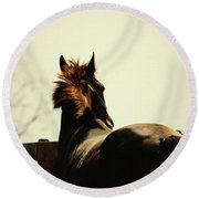 Lonely Horse Round Beach Towel