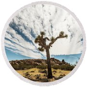 Lonely Joshua Tree Round Beach Towel by Amyn Nasser