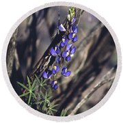 Lonely Lupine Round Beach Towel