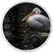 Lonely Pelican Round Beach Towel