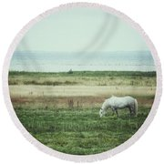 Lonely Pony Round Beach Towel by Karen Stahlros